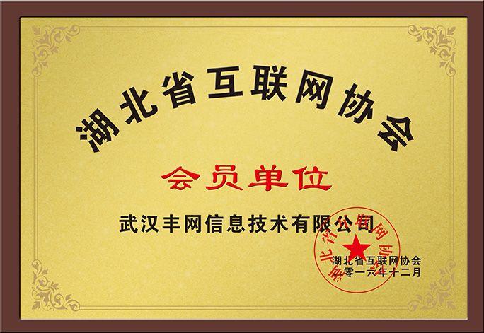 湖北省互联网协会会员单位